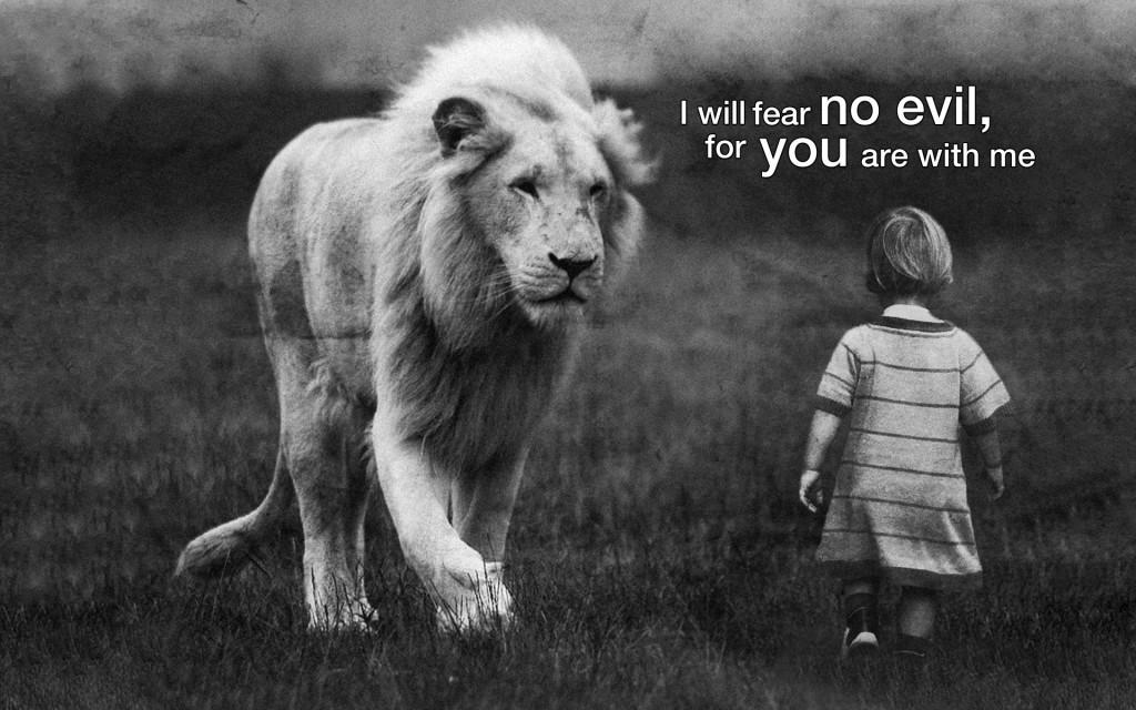 lion-fear-no-evil-wallpaper_1920x1200